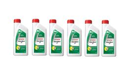 Castrol 2T 2 Stroke Lawnmower Oil 1L 6 Box 127551