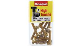 Champion Bolt & Nut Pack Metric M5 x 25mm BM14