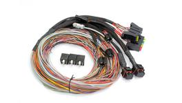 Haltech HT-041302 PS1000 Autospec Universal Wire-in Harness Only Long 2.5m