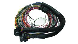 Haltech HT-041401 PS2000 Autospec Universal Wire-in Harness Only Short 1.2m