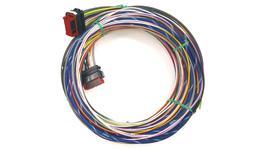 Haltech HT-06-580-CA-HARNST Harness Smartwire Street