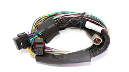 Haltech HT-140902 Elite 1500 2.5m Basic Universal Wire-in Harness Only (no relays or fuses)