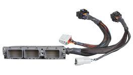Haltech HT-141342 Elite 2500 Adaptor Harness fits Toyota Supra JZA80 2JZ