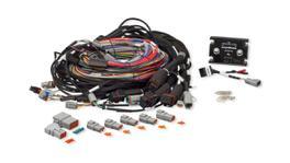 Haltech HT-142004 Elite 2500 & Race Expansion Module (REM) 16 Sequential Injector Integrated 2.5m