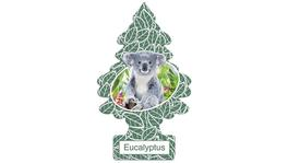 Little Trees Car Air Freshener Eucalyptus 10 Pack