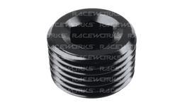 """Raceworks Npt Plug 3/8"""""""