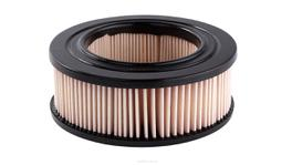 Ryco Air Filter A21