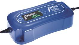 Thunder Battery Chargers 12V 8A TDR02108