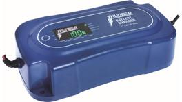 Thunder Battery Chargers 12V 30A TDR02130